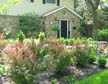 Fusion Landscaping Consultations